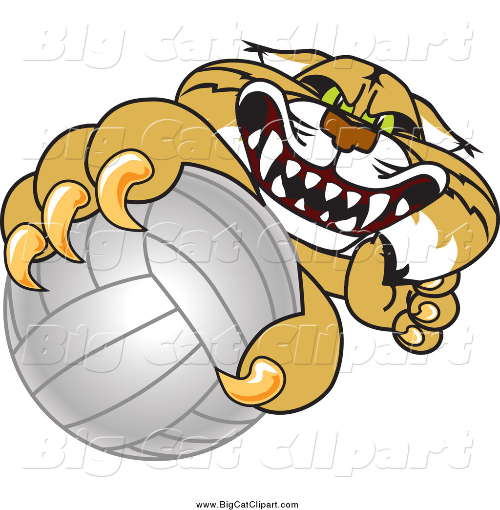 1024x1044 Big Cat Vector Clipart Of A Bobcat Grabbing A Volleyball By