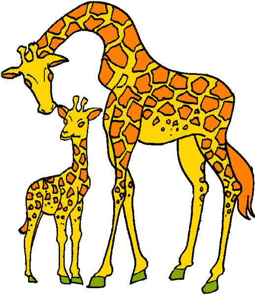 518x600 Image Of Giraffe Clipart