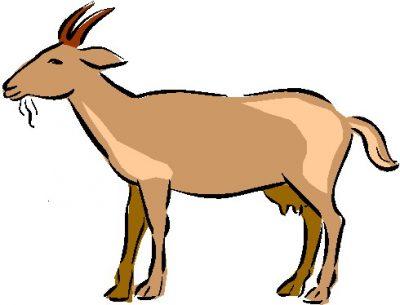 400x305 Goat Clipart Clipartaz Free Clipart Collection