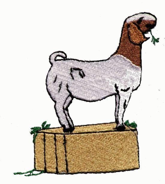 550x616 Boer Goat Clip Art Boer Goat Clip Art Pictures Boer Goats