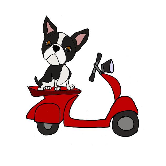 630x630 Cute Boston Terrier Riding Motor Scooter Cartoon