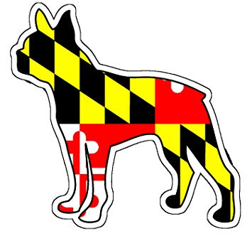 355x332 Maryland Flag Boston Terrier Sticker Sports Amp Outdoors