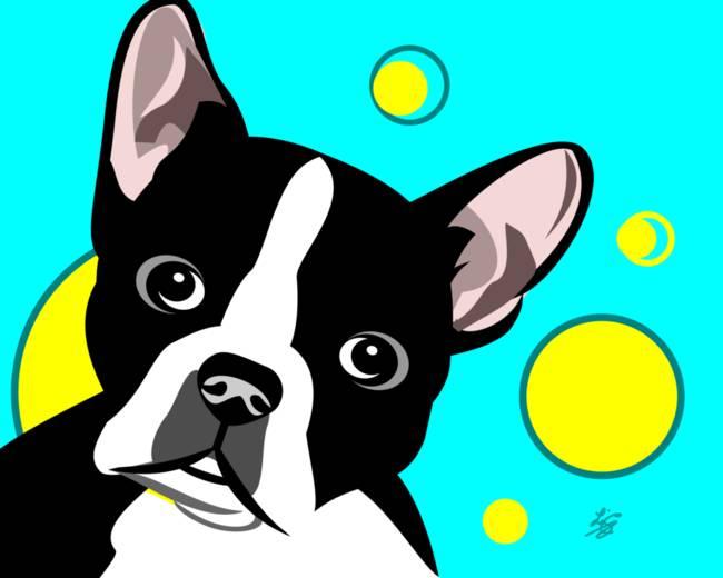 650x520 Stunning Boston Terrier Dog Art Artwork For Sale On Fine Art Prints