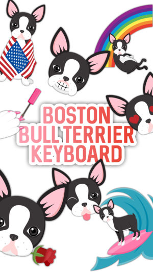 300x533 Boston Bull Terrier Keyboard On The App Store