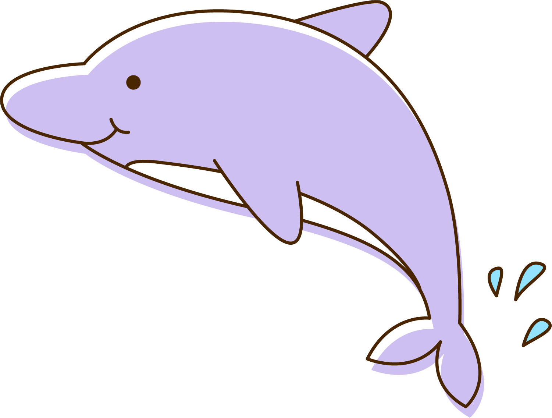1501x1136 Common Bottlenose Dolphin Tucuxi Porpoise Clip Art