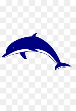 260x380 Spinner Dolphin Bottlenose Dolphin Clip Art