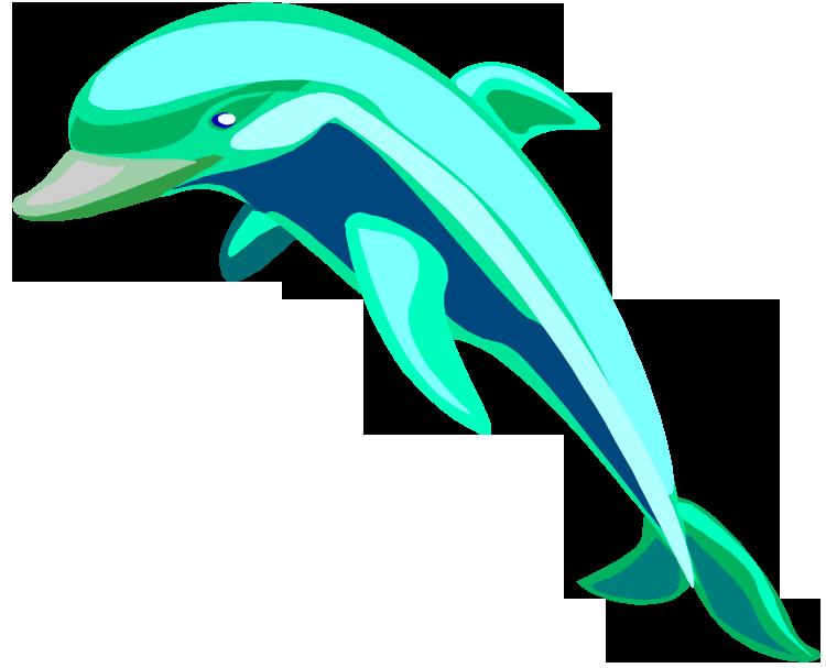 750x607 Bottlenose Dolphin Clipart