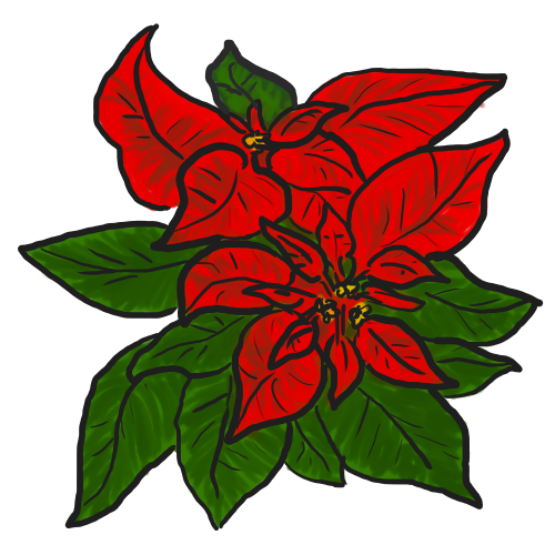 500x500 Bouquet Clipart Poinsettia