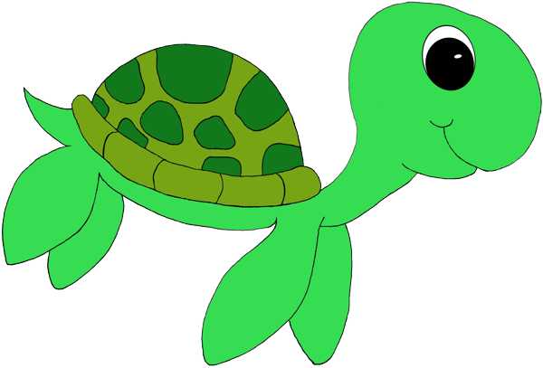 600x407 Sea Turtle Turtle Clipart Biezumd