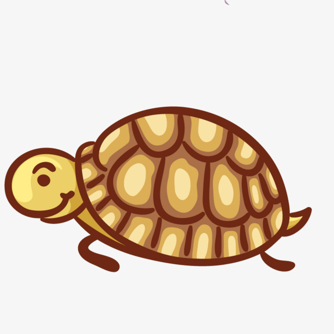 650x651 Biological Little Turtle, Animal, Illustration, Art Png Image