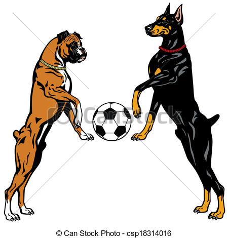 450x470 Dogs Doberman And Boxer Breeds, Illustration Isolated On Vector