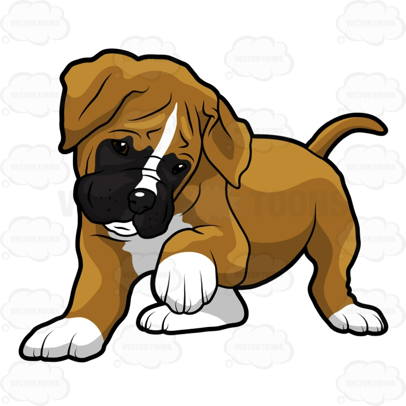 800x800 Boxer Puppy Standing With One Paw Up Cartoon Clipart Vector Toons