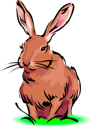 193x262 Image Result For Rabbit Clip Art Critter Cip Art