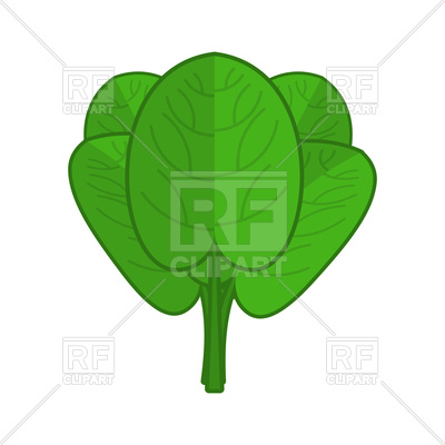 400x400 Spinach Green Leaves Royalty Free Vector Clip Art Image