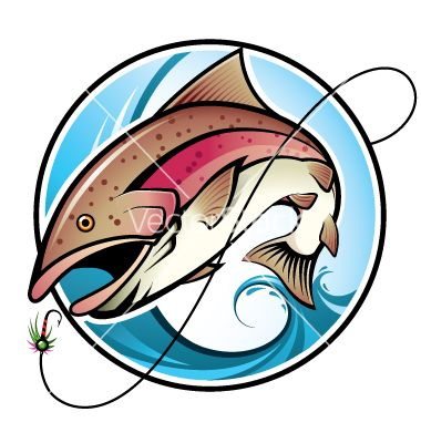 380x400 Rainbow Trout Pictures Free Rainbow Trout Vector 730879