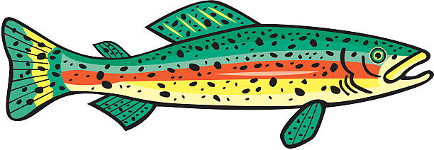 brook trout clipart at getdrawings com free for personal use brook rh getdrawings com trout silhouette clip art trout silhouette clip art