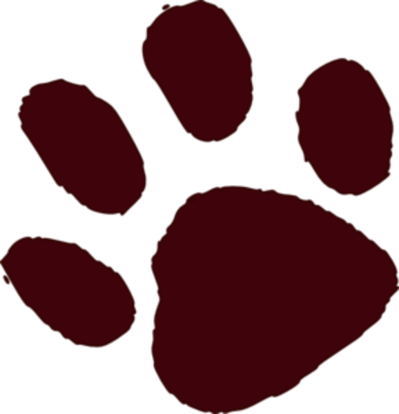 578x600 Paw Clipart Brown Bear