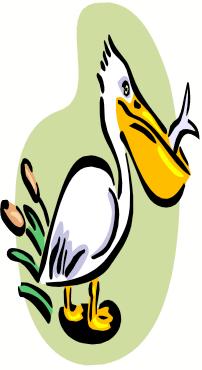 202x370 Pelican Rods