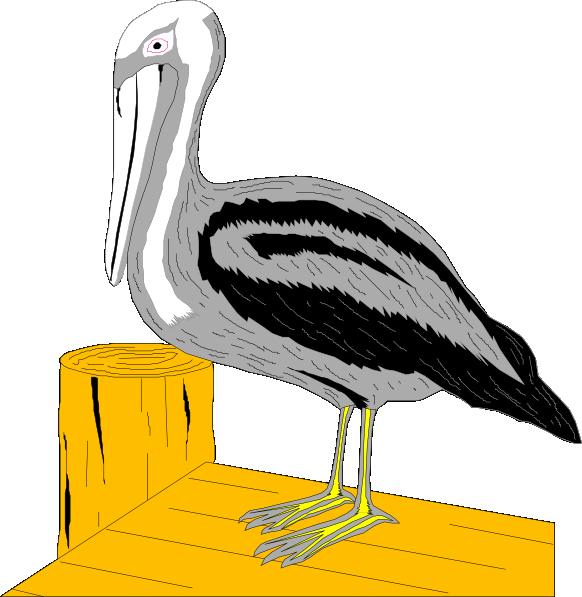 582x597 Pelican On Dock Clip Art