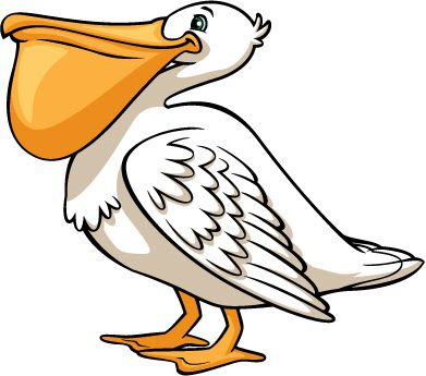 Brown Pelican Clipart At Getdrawingscom Free For Personal