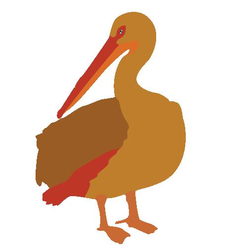 508x508 Beak Bird Brown Pelican Clip Art
