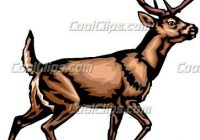 200x140 Whitetail Deer Clipart Group