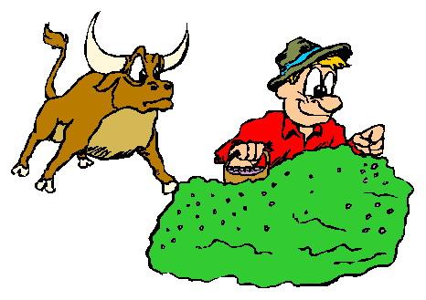 466x329 Brahma Bull Clip Art Download