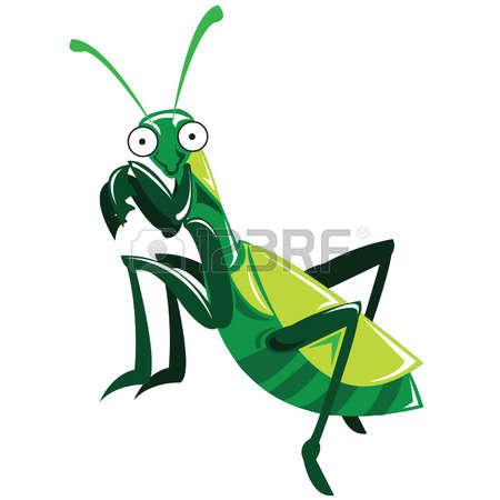 450x450 Mantis Clipart Green Bug
