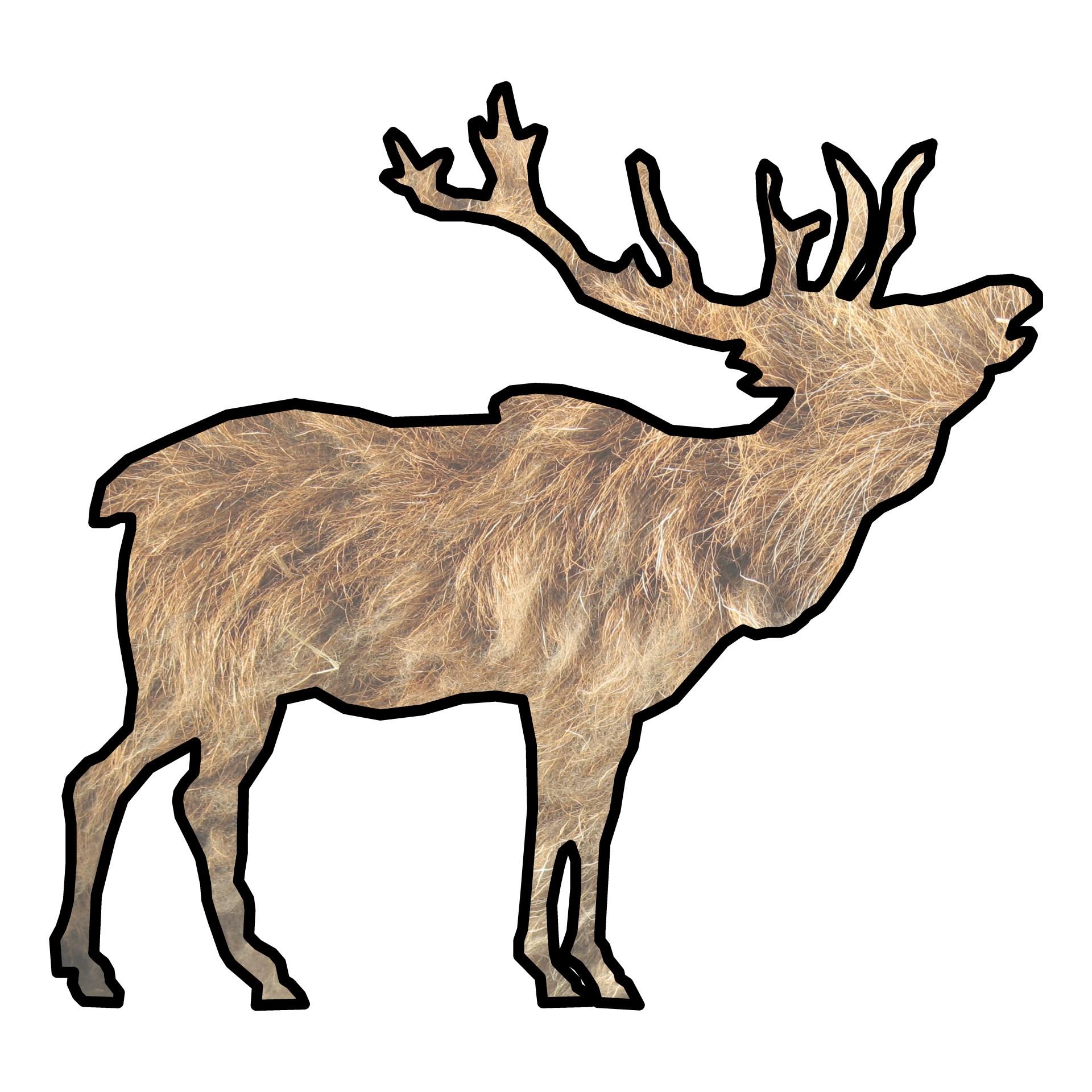 1920x1920 Elk Silhouette