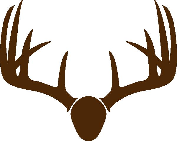 600x478 Brown Deer Skull Mount Clip Art