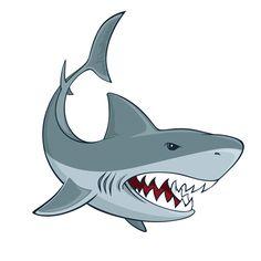 Bull Shark Clipart