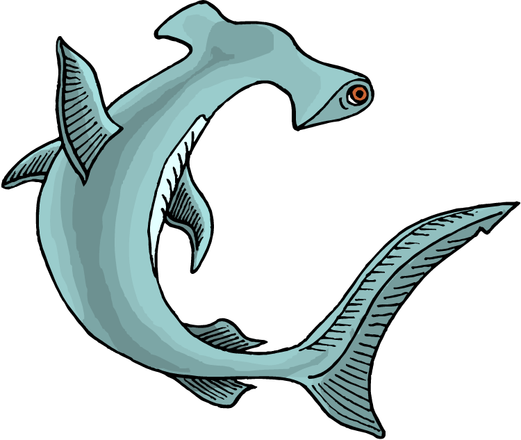750x633 Free Shark Clipart