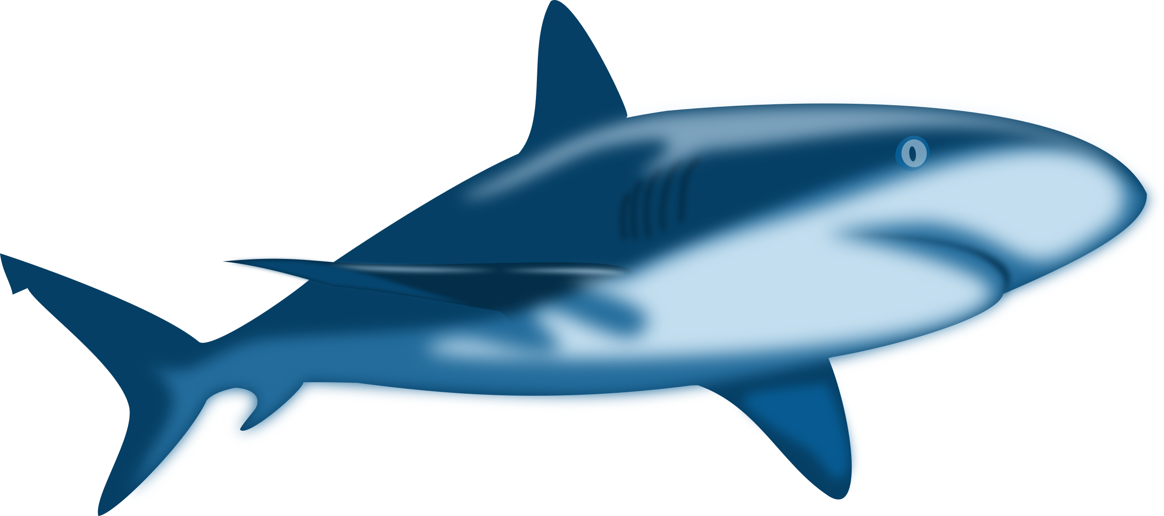 2400x1064 Shark Shaded Icons Png