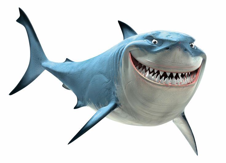 736x531 Shark Bmp Clipart