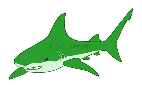 570x428 Shark Clip Art Instant Download Green Shark Clipart