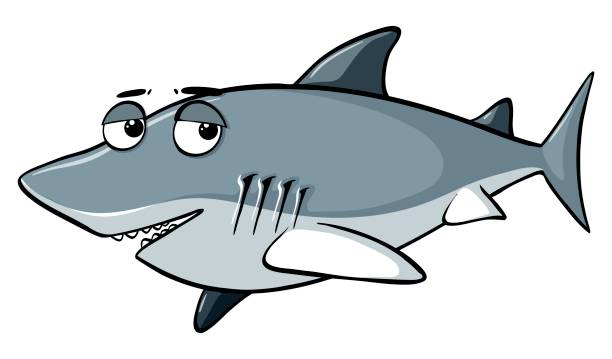 612x359 Collection Of Shark Clipart Background High Quality, Free
