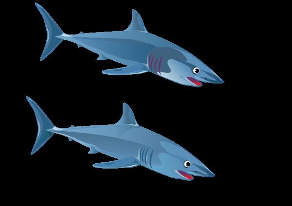600x424 Blue Shark Fish Png Clip Arts For Web