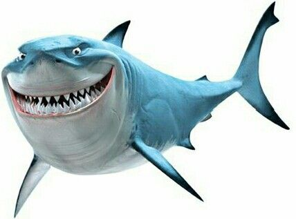 428x317 Bruce The Great White Shark Alice And Mad Hatter Shark