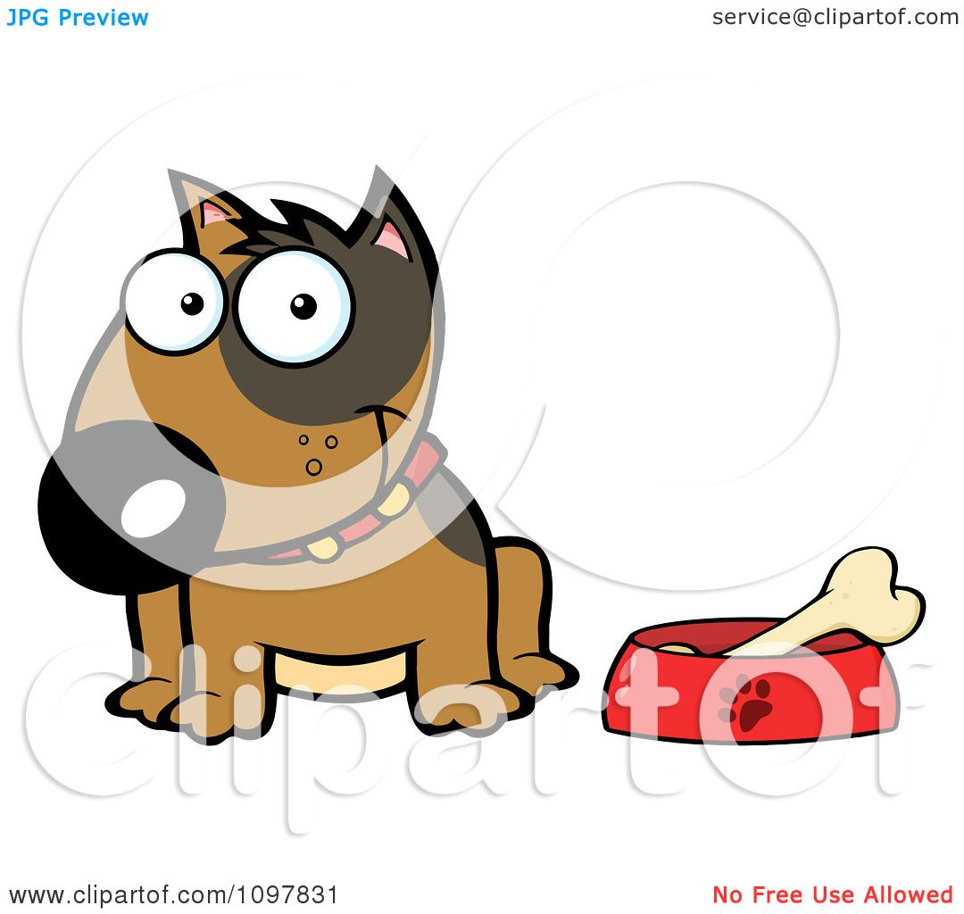 1080x1024 Clipart Happy Brown Bull Terrier Sitting By A Dish With A Bone