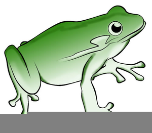 300x263 Bullfrog Clipart Hat Free Images