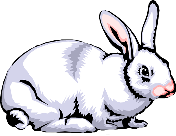675x524 Rabbit Clip Art Images Clipart Panda
