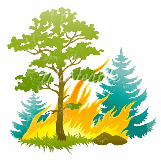 Burning Bush Clipart