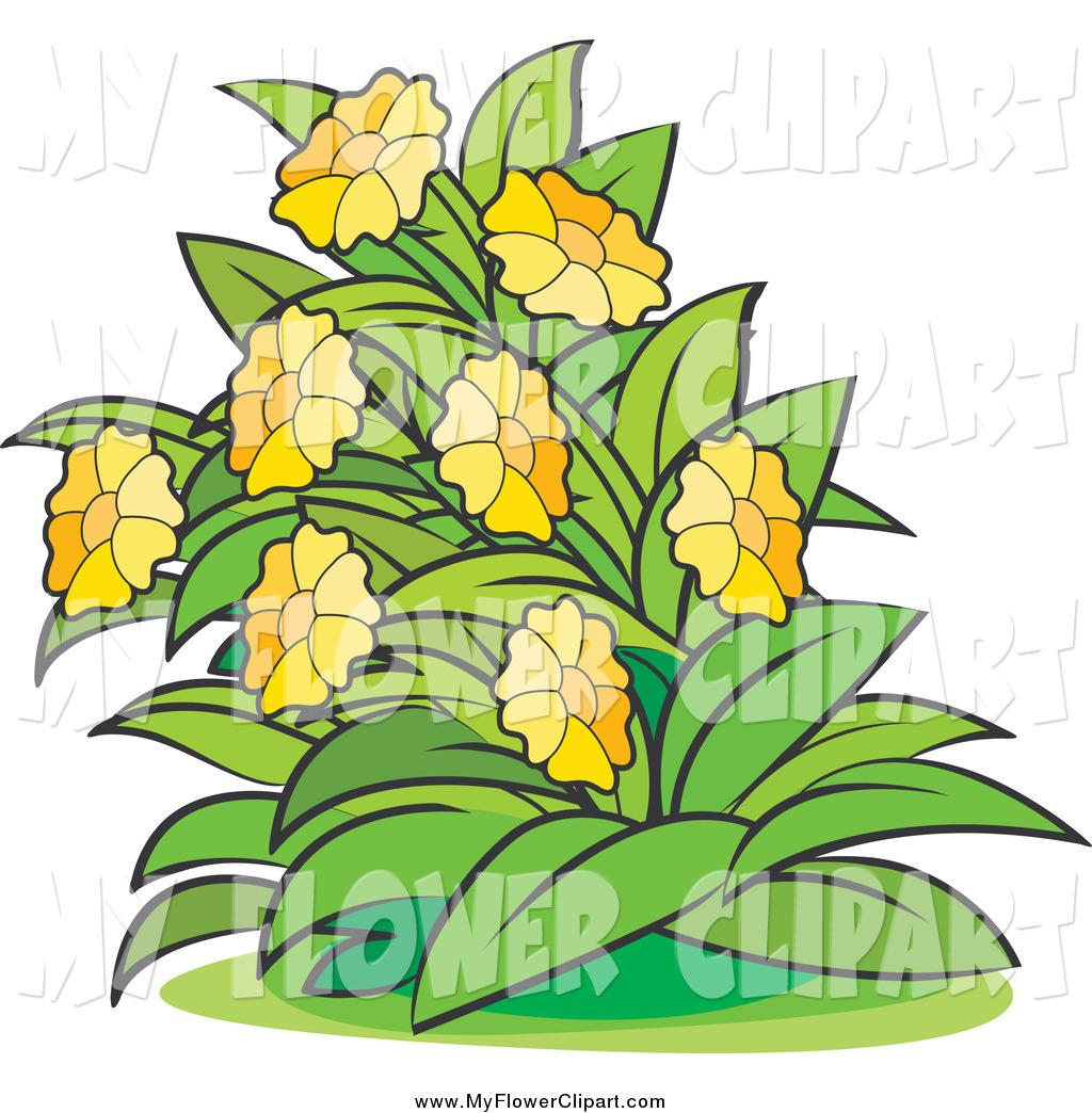 1024x1044 Bush Plant Clip Art