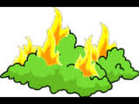 480x360 Simpsons Tapped Out! Episode 5 Burning Bush