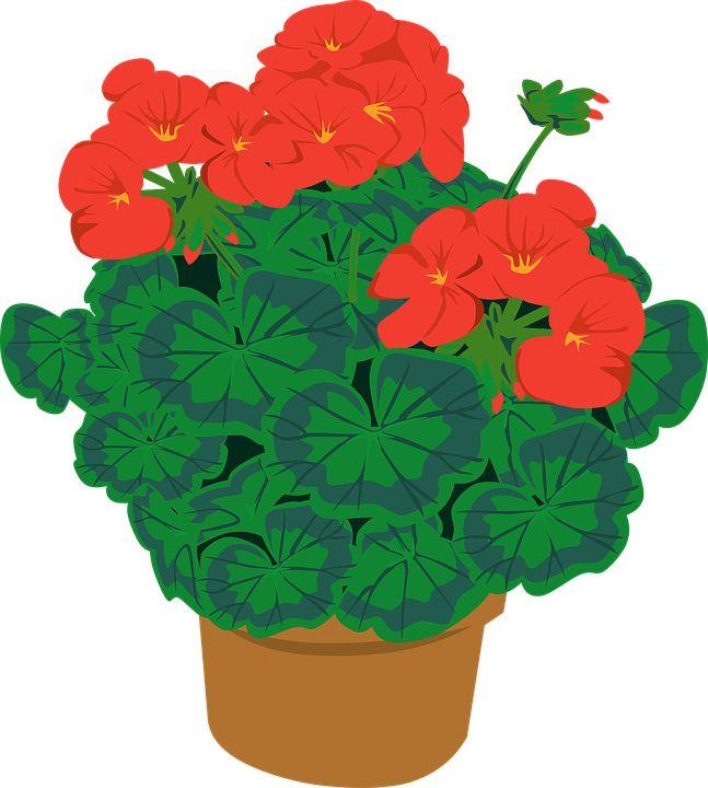 647x720 16 Best Sabtai Tsetseg Images On Painted Flowers, Pot