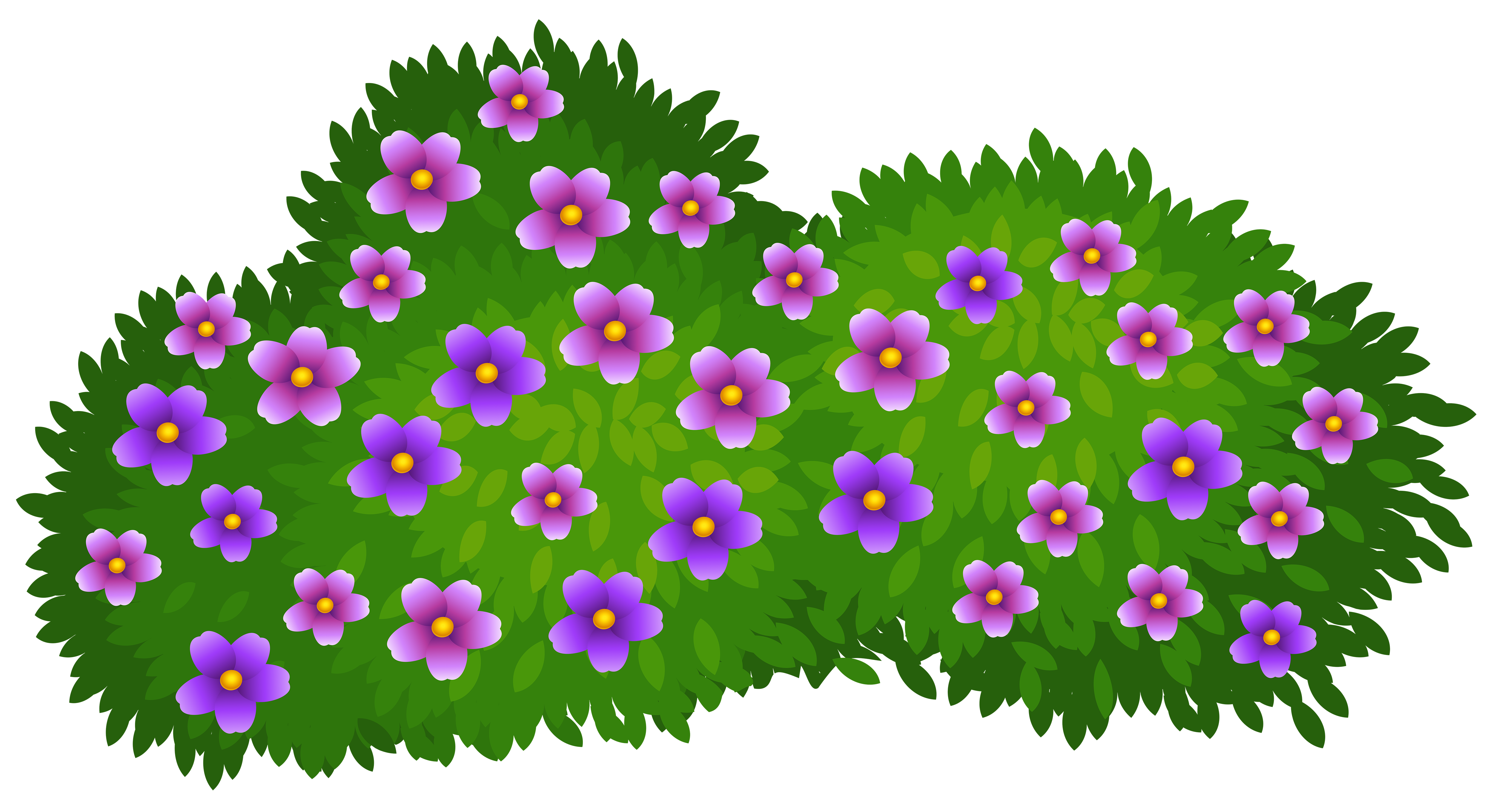 5000x2720 Green Bush With Flowers Transparent Png Clip Art Imageu200b Gallery