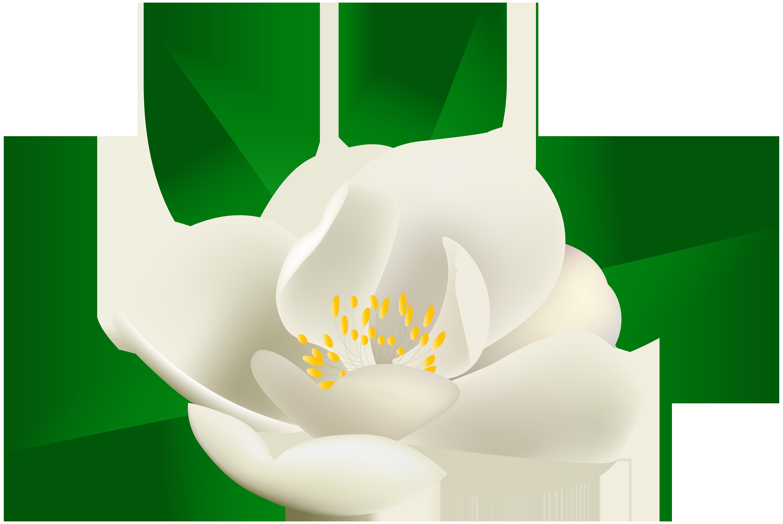 6000x4017 Rose Bush Flower Transparent Clip Art Image U200b Gallery