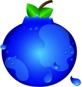 285x300 Blueberry Clipart Blueberry Bush