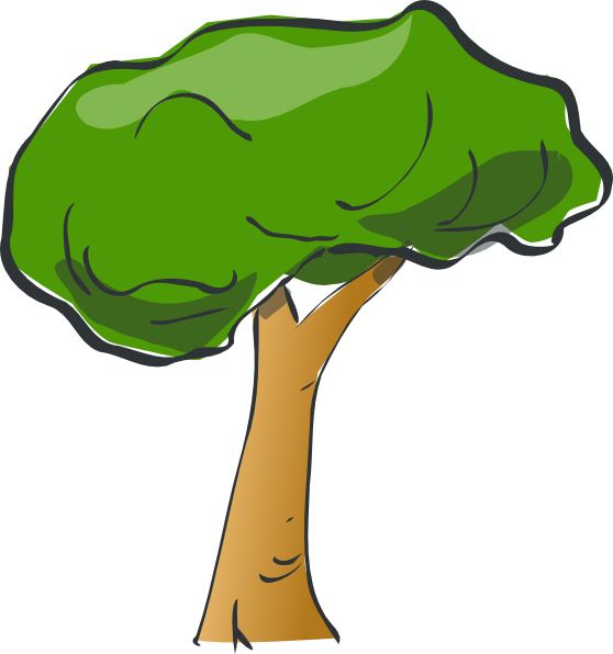 558x596 Bush Clipart Rainforest Tree