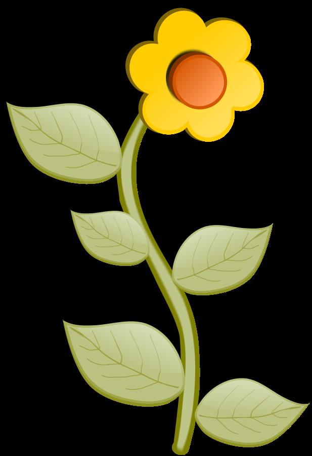 617x900 Buttercup Clipart Big Flower